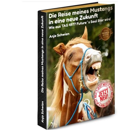 Buchbestellung: Die Reise meines Mustangs in eine neue Zukunft