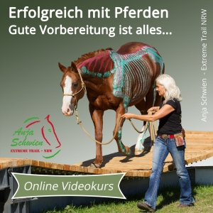 Online Video-Kurs